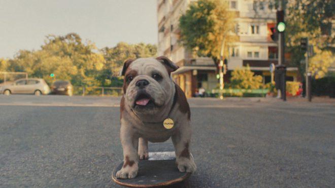 Churchill's nodding bulldog mascot has been given a CGI makeover