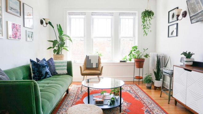 A 650-Square-Foot Chicago Rental Has Cute Cat Decor and the Perfect Pale Pink Accent Wall
