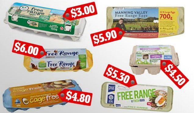 Shoppers vote for the best eggs based on taste, freshness and value