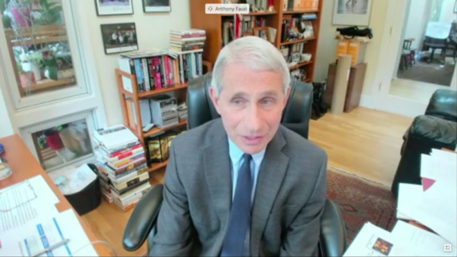 Dr. Anthony Fauci's Home Office Gets Some Serious Attention During Virtual Senate Hearing